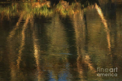 Dream Like Photograph - Tales From The Riverbank   V by Robert Brown
