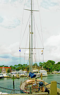 Photograph - Tall Boat by Susan Leggett