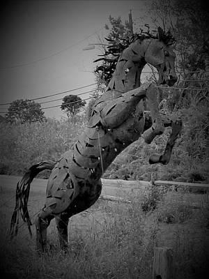 Photograph - Tall Grass Horse1 B W by Rob Hans