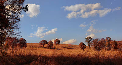 Photograph - Tall Grass Prairie In Autumn by Ann Powell