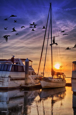 Photograph - Tall Mast At Sunset by Debra and Dave Vanderlaan