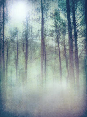 Photograph - Tall Pines by Ann Powell