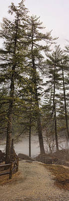 Panoramic Photograph - Tall Pines Lower Falls by Heather Applegate