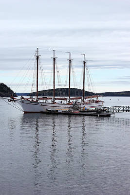Photograph - Tall Ship Bar Harbor by Mary Bedy