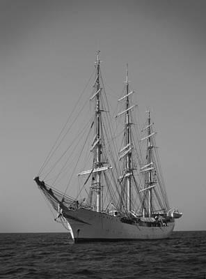 Tall Ship Denmark  Original by Dustin K Ryan