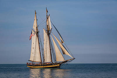 Bird At Sea Photograph - Tall Ship Pride Of Baltimore II by Dale Kincaid