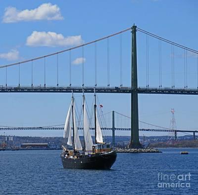 Tall Ships. Marine Art Painting - Tall Ship Silva by John Malone