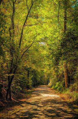 Photograph - Tallulah Trail by Mick Burkey
