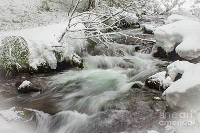 Photograph - Tamanawas Creek by Patricia Babbitt