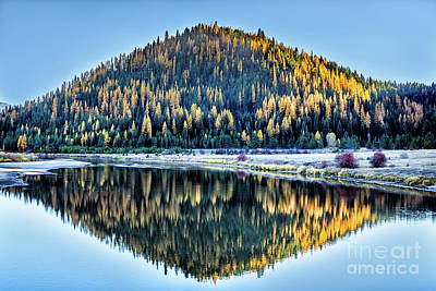 Photograph - Tamarack Glow Idaho Landscape Art By Kaylyn Franks by Kaylyn Franks