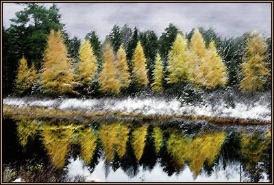 Photograph - Tamarack Storm by Wayne King