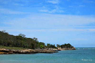 Photograph - Tamarindo, Guanica, Pr by Edgar Torres