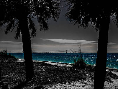 Photograph - Tampa Bay Blue by Randy Sylvia