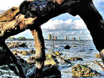 Tampa Bayshore Boulevard Viewed Through Driftwood Art Print by John Trommer