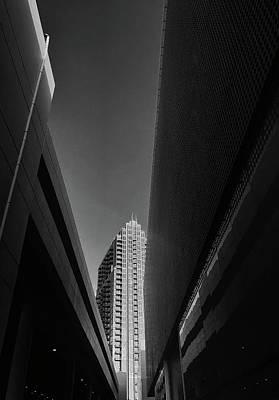 Photograph - Tampa, Fl by Tara Miller