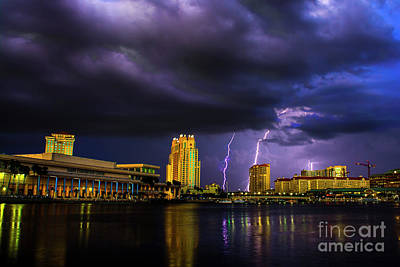 Photograph - Tampa Lightning by Quinn Sedam