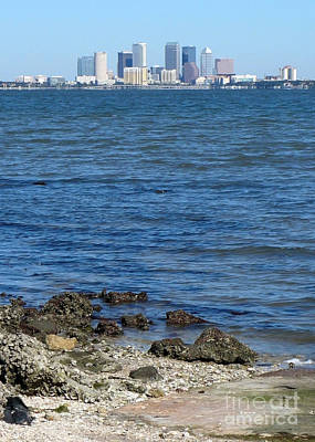 Photograph - Tampa Skyline From Ballast Point by Carol Groenen