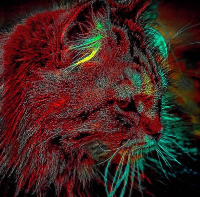 Digital Art - Tangarine In Red by Cathy Harper