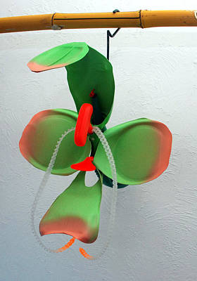 Mixed Media - Tangerine Pitcher Orchid by Michael Jude Russo