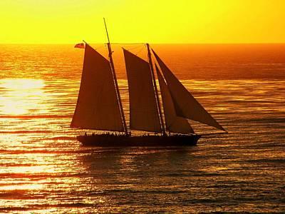 Tangerine Sails Print by Karen Wiles