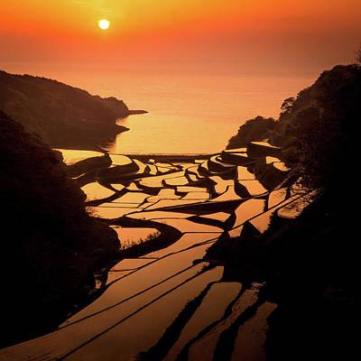 Japan Photograph - Tangerine Tiiles by Masa Onikata