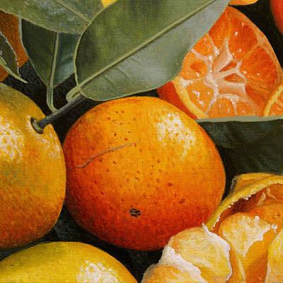 Tangerine Painting - Tangerines by Dietrich Moravec