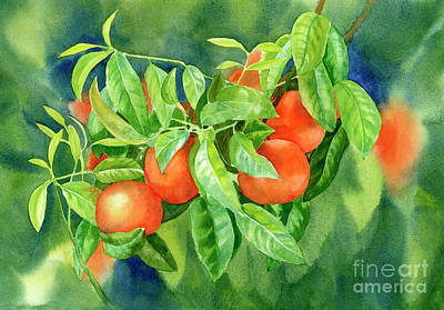 Tangerines With Background 2 Art Print