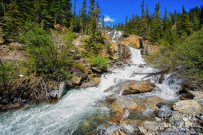 Photograph - Tangle Creek Falls by David Arment