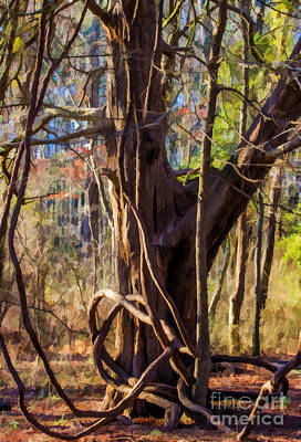Photograph - Tangled Vines On Tree by Roberta Byram