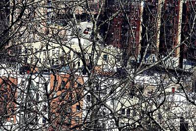 Tangled Town Art Print by Sarah Loft