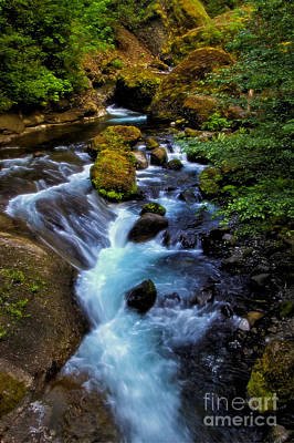 Photograph - Tanner Creek Summer by Sonya Lang