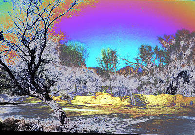 Photograph - Tanque Verde Wash Abstract by M Diane Bonaparte