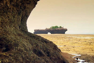 Mixed Media - Tanzanian Island Zanzibar Coral Structures Landscape Photography by Navin Joshi