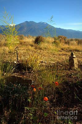 Photograph - Taos Landscape by Anjanette Douglas