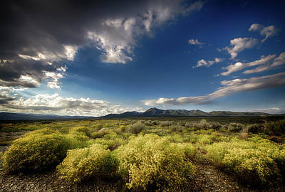 Photograph - Taos Plateau by Robert Woodward