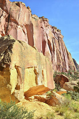 Photograph - Tapestry Wall In Capitol Gorge by Ray Mathis