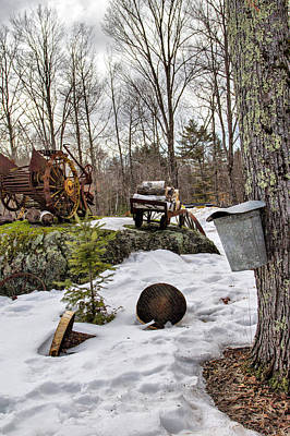 Photograph - Tapping A Maple Sugar Tree by Betty Pauwels
