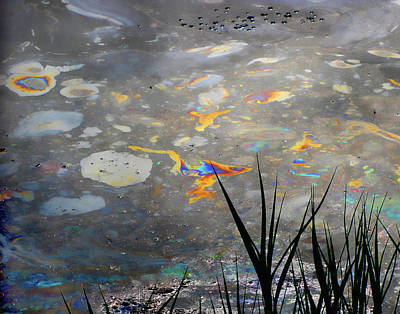 Tar Pit's Beauty I Art Print