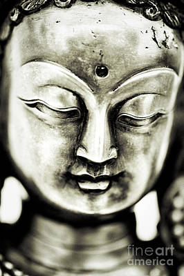 Buddha Statue Photograph - Tara by Tim Gainey