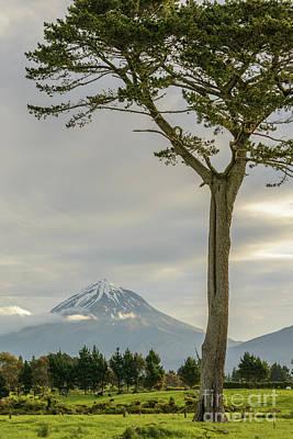 Photograph - Taranaki 3 by Werner Padarin