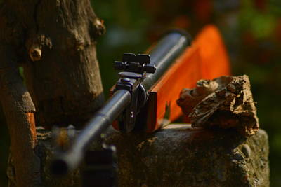 Photograph - Target In Sight by Salman Ravish