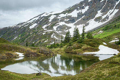 Art Print featuring the photograph Tarns Of Nagoon 209 by Tim Newton