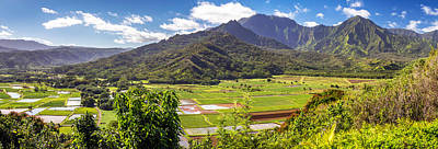 Photograph - Taro Fields Of Hanalei Kauai by Pierre Leclerc Photography