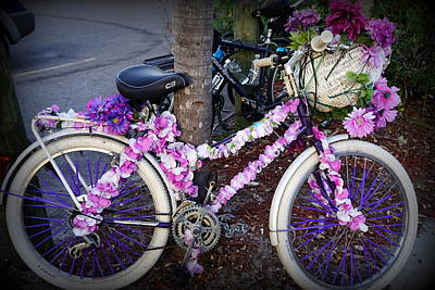 Photograph - Tarpon Bike by Laurie Perry