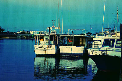 Photograph - Tarpon Dock by Laurie Perry