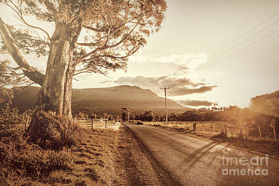 Bleached Tree Photograph - Tasmania Countryside Sunset by Jorgo Photography - Wall Art Gallery