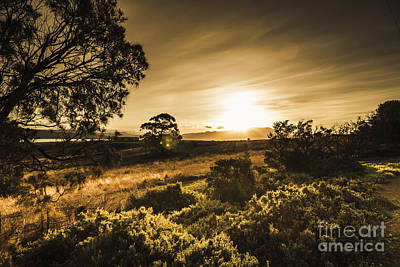 Golden Orb Photograph - Tasmania Farmland Sunset by Jorgo Photography - Wall Art Gallery