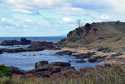 Photograph - Tasmania No. 153-2 by Sandy Taylor