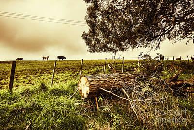Tasmanian Country Farm Details Art Print by Jorgo Photography - Wall Art Gallery