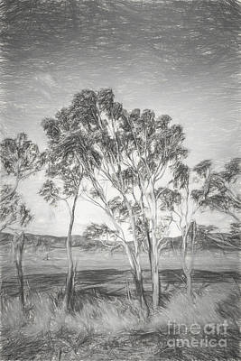 Drawing - Tasmanian Countryside Illustration by Jorgo Photography - Wall Art Gallery